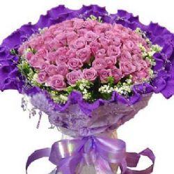 只�勰阋蝗�/99朵紫玫瑰