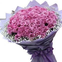 爱到永远/99朵紫玫瑰