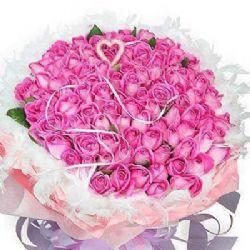 祝福/99朵紫玫瑰