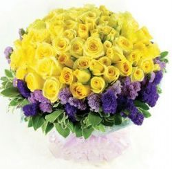 心灵的触动/99朵黄玫瑰