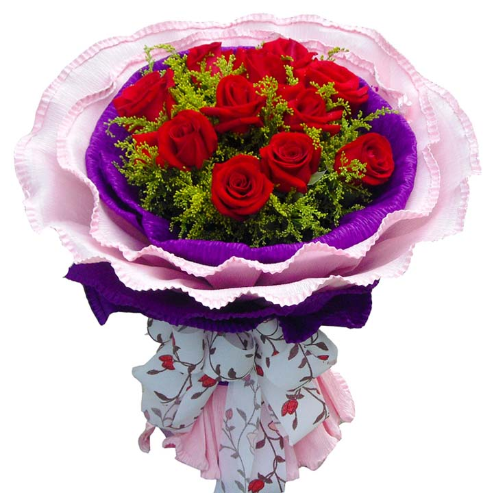 一生最爱/11朵红玫瑰