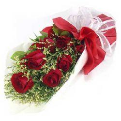 想念/9朵红玫瑰