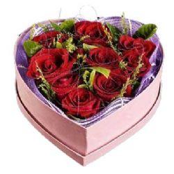 温馨浪漫/9朵红玫瑰