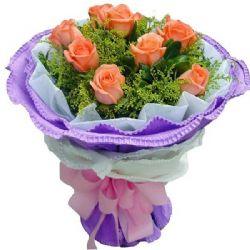 温馨关怀/9朵粉玫瑰