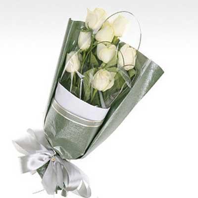 白衣仙子/9朵白玫瑰