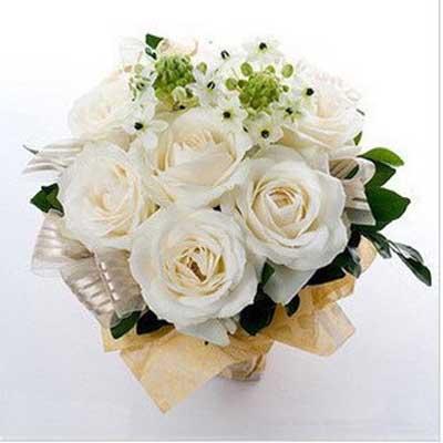 今生有你/9朵白玫瑰