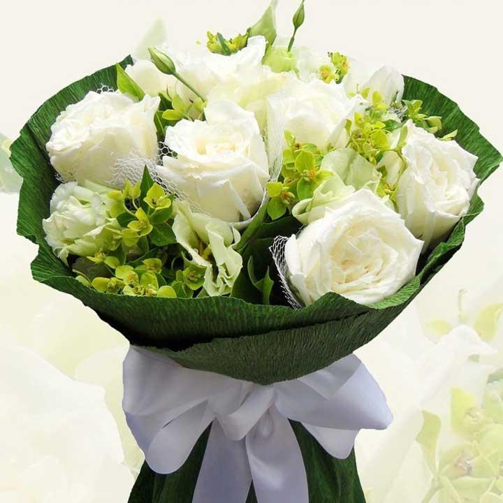 守候星空/9朵白玫瑰