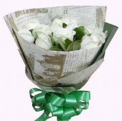 纯洁/9朵白玫瑰