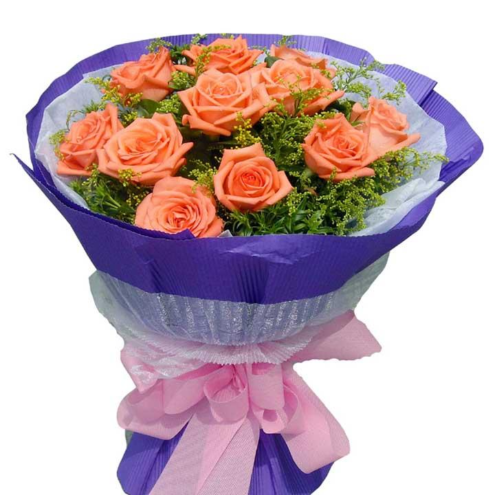 温馨/11朵粉玫瑰