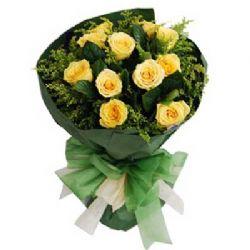 原谅我/11朵黄玫瑰