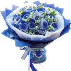 蓝色幻想/11朵蓝玫瑰