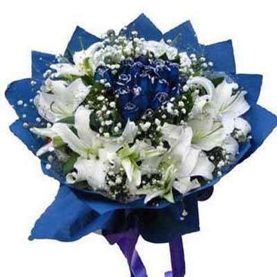 蓝色精灵/11朵蓝玫瑰