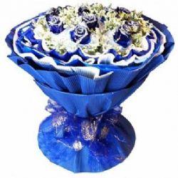 迷情/11朵蓝玫瑰