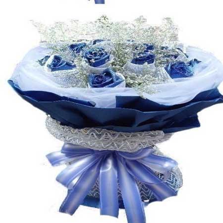 遇上你/11朵蓝玫瑰