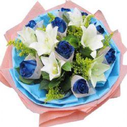 手牵手/9朵蓝玫瑰
