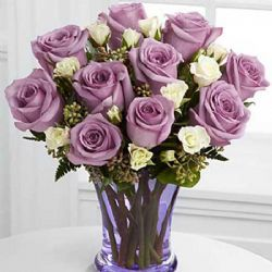幸福无限/12朵紫玫瑰