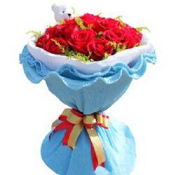 轻轻问候/12朵红玫瑰