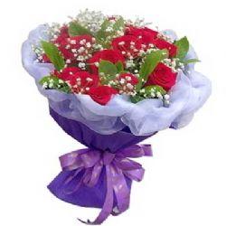 爱永不变/12朵红玫瑰