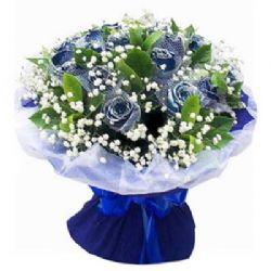 祝福/12朵蓝玫瑰