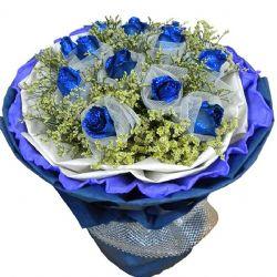 蓝之梦/12朵蓝玫瑰