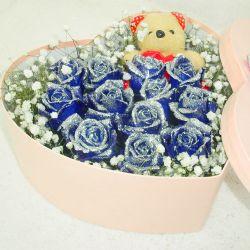 心心相连/12朵蓝玫瑰