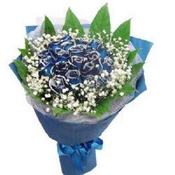 相守/19朵蓝玫瑰