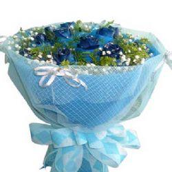 甜密的爱/20朵蓝玫瑰