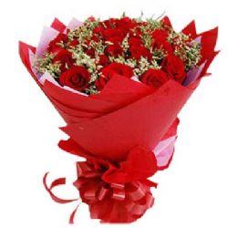 想念你/22朵红玫瑰