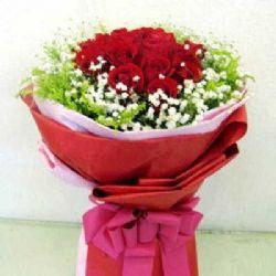 无悔的决定/22朵红玫瑰