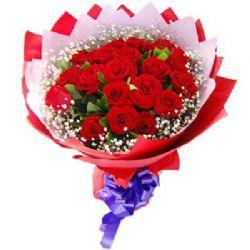 爱相随/22朵红玫瑰