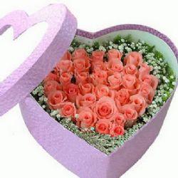 藏在我的心中/22朵粉玫瑰