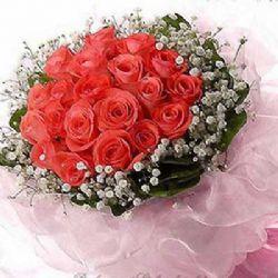 祝福/21朵粉玫瑰