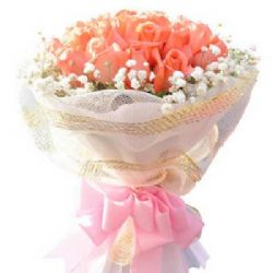 伴随着你/20朵粉玫瑰