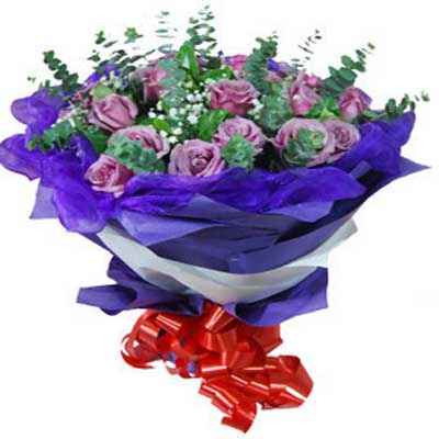 牵挂/22朵紫玫瑰