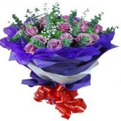 ���/22朵紫玫瑰