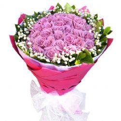 我愿做一条鱼/22朵紫玫瑰