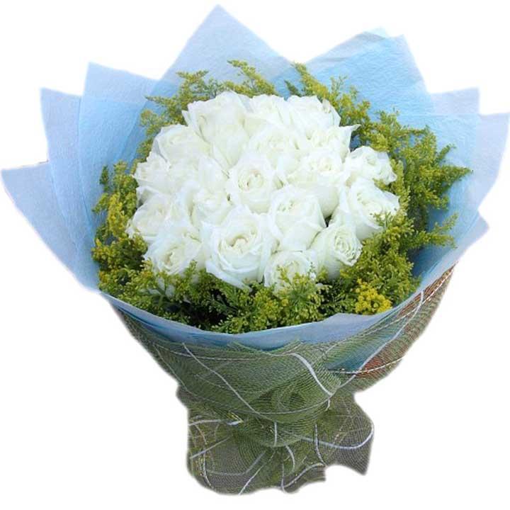 时常想念/21朵白玫瑰