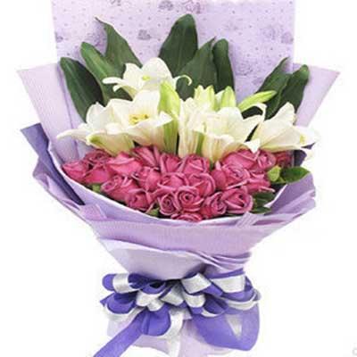 我对你的情/21朵紫玫瑰