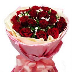我的心意/21朵红玫瑰