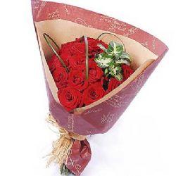 守护你/20朵红玫瑰