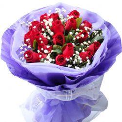 无怨无悔/19朵红玫瑰
