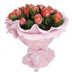 生日祝福/19朵粉玫瑰