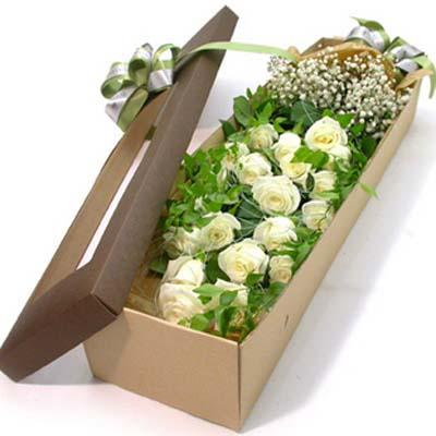 呼吸的间隙/19朵白玫瑰