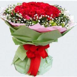 青春赞歌/18朵红玫瑰