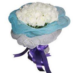 圣洁的爱/18朵白玫瑰