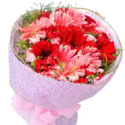 美好祝福/10朵太陽花