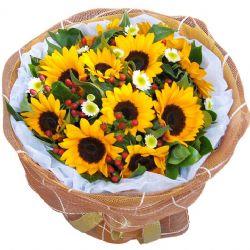 就要你快乐/11朵向日葵