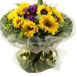 暖暖親情/11朵向日葵