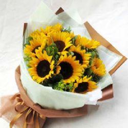 沉默的愛/10朵向日葵: 10朵向日葵、黃鶯(向日葵屬于季節性花材,并且很多配送店無備貨,購買前必須先咨詢客服人員,并且需提前三天預定)
