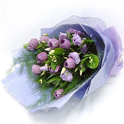紫色的诱惑/9朵郁金香
